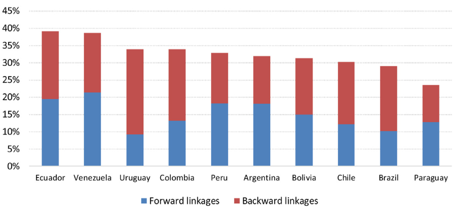 Implications of measuring value added in exports with a regional input-output table. A case of study in South America.